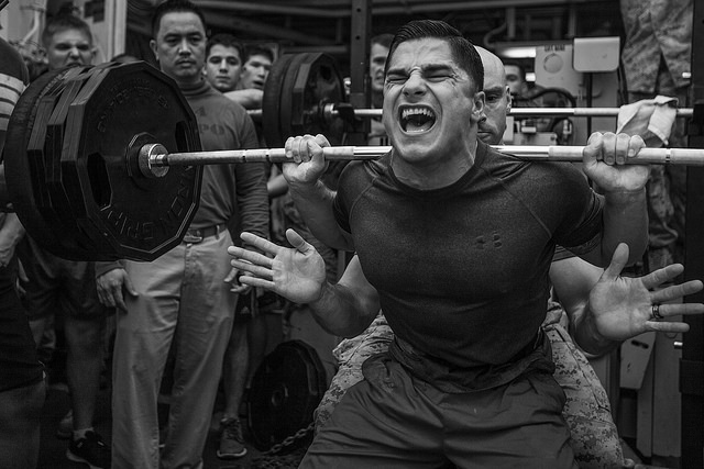 Which Powerlifting Program is Best For You